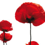 An Evening of Remembrance